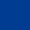 フロッキープリントカラー ロイヤルブルー