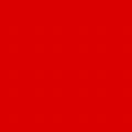 フレックスプリントカラー レッド