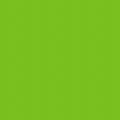 フレックスプリントカラー アップルグリ