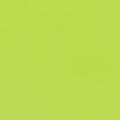 フレックスプリントカラー ライトグリーン