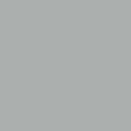 ナイロン用フレックス/特色 シルバー