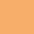 シルクプリント用カラー DIC54