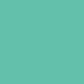 シルクプリント用カラー DIC65