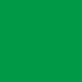 シルクプリント用カラー DIC572